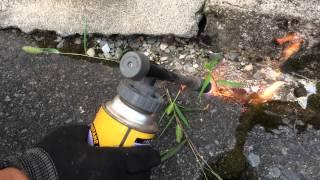 雑草が鬱陶しいのでバーナーで燃やしました。 BBQにも使えるし便利です...