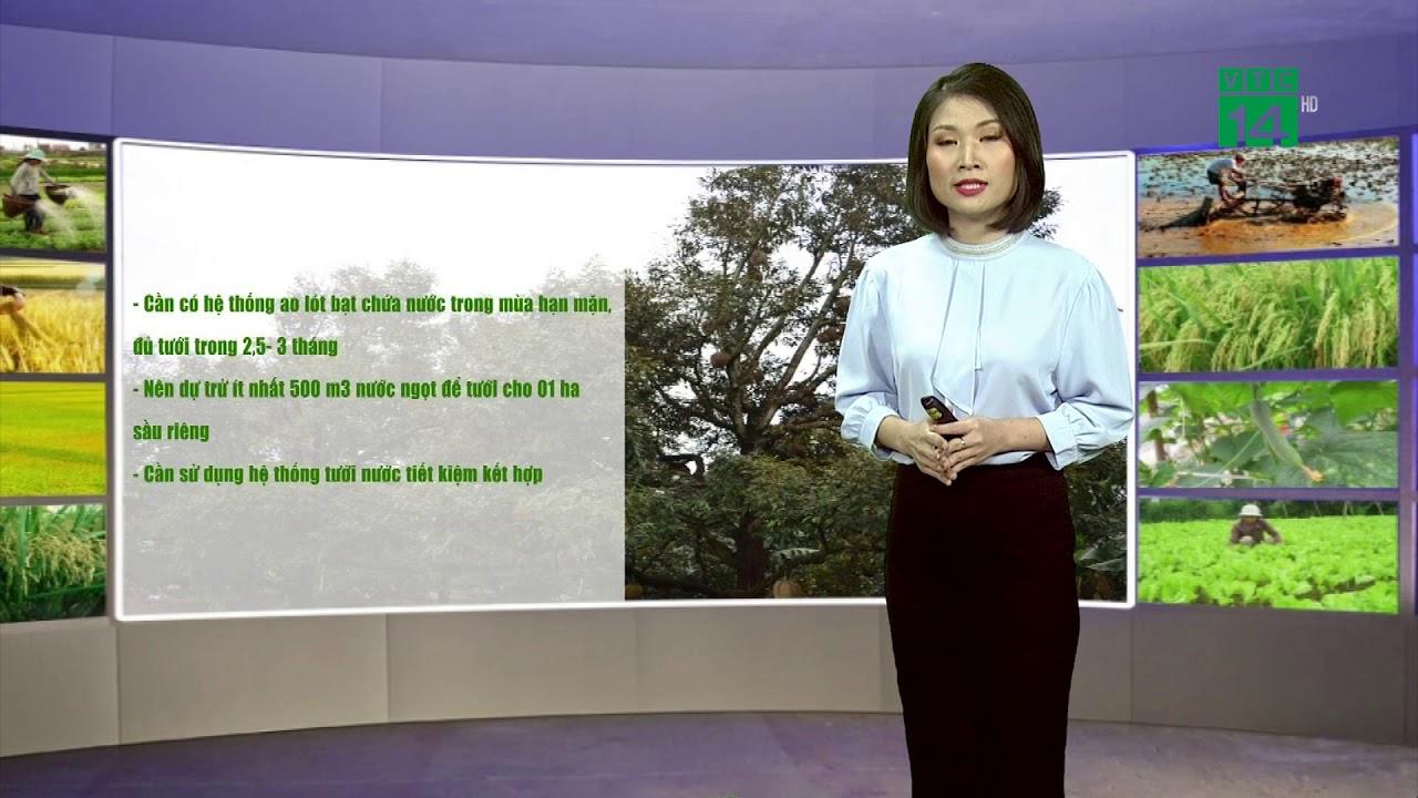 Thời tiết nông vụ 22/04/2020: Chăm sóc sầu riêng khi hạn mặn | VTC14