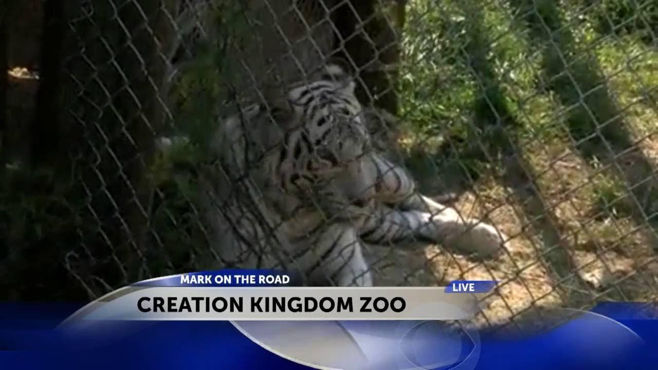 Zoo in gate city va