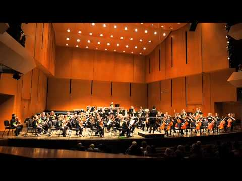 Sistema Side by Side Orchestra performs Jean Sibelius: Finlandia