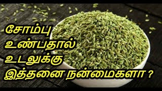 Benefits Of Fennel Seeds in Tamil | Sombu | Weight Loss | Healthy Life - Tamil.