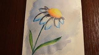 Ромашка акварелью / Flower watecolor painting - speed painting