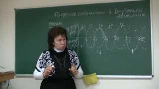 Гендерные особенности возрастной психологии,1 из 2. Психолог Наталья Кучеренко. Лекция №02.