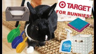 Things You Can Buy at TARGET for Rabbits!