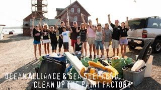 Sea Shepherd & Ocean Alliance Clean Up The Paint Factory