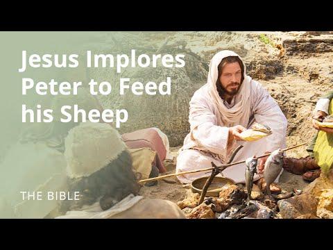 Jesus Christ Implores Peter To