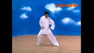 Синь-и-цюань Ди Гоюн, 12 форм животных Уроки