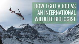 How I got my WILDLIFE BIOLOGIST job // & TIPS for biology majors