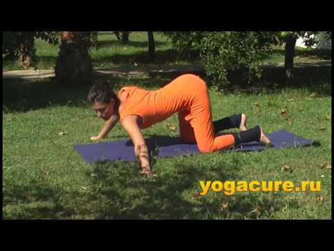 Yoga Therapy Sequence for Back Disorders