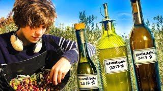 Making Wintergatan Olive Oil