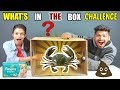 WHAT S IN THE BOX CHALLENGE CRAB DIAPER POOP SLIME Wake N Bite Food Challenge India Ep 92 mp3