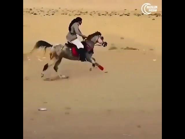 Онлайн арабский ролик про фото разными предметами