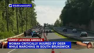Deer strikes, injures Black Lives Matter protester in New Jersey