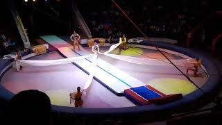 Acrobats Acrobatics Fast Track Circus ct Variety Performance Entertainment