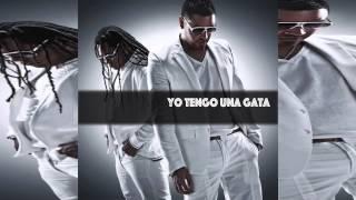 Zion y Lennox Feat Daddy Yankee, Plan B, Arcangel y mas - Yo tengo una Gata