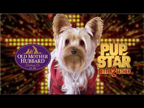 pup-star:-better-2gether---old-mother-hubbard-dog-treats