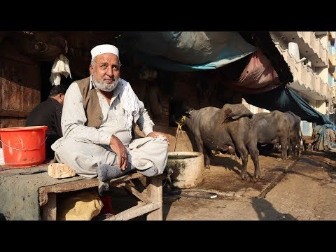Пакистан 2020. Чего стоит бояться. Жесть на дорогах. Кладбище кораблей. Карачи #4