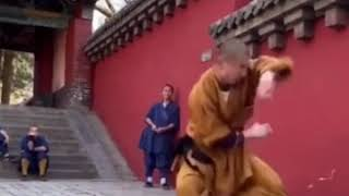 🔥 Shaolin Beats 🔥🐲 武术少林