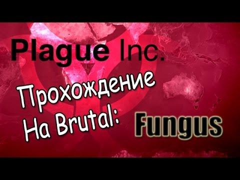 Plague Inc Evolved, Прохождение на Brutal: Fungus