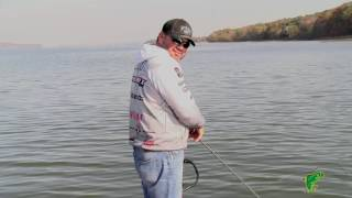 If a Fish Could Talk........ Q&A with Greg Hackney