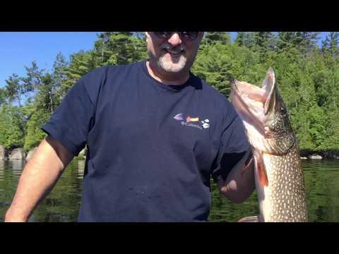 Monster Pike Caught On Lower Saranac Lake