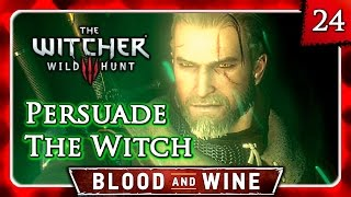 Witcher 3 🌟 BLOOD AND WINE 🌟 Persuade the Witch of Lynx Crag to Lift the Curse - Knight's Tales #24
