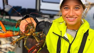 Catch & Cook: Maine Lobster & Rock Crab | Field Trips Maine