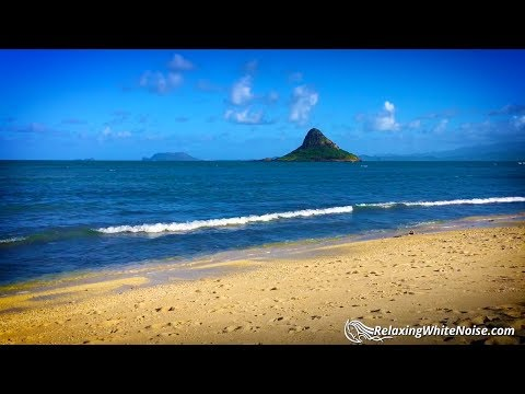 Hawaii Ocean Sounds | Sleep, Study, Relax | 10 Hours Waves