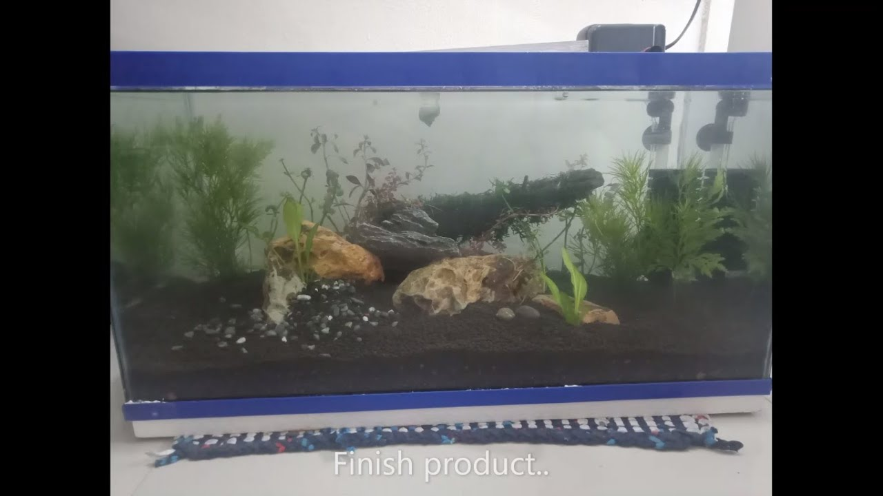 PROJECT: How to make an aquascape with a minimum budget ...