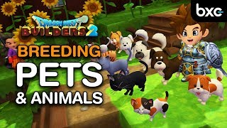 Dragon Quest Builders 2 - Breeding Pets and Animals
