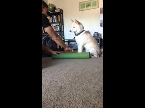 Puma Yoga Mat
