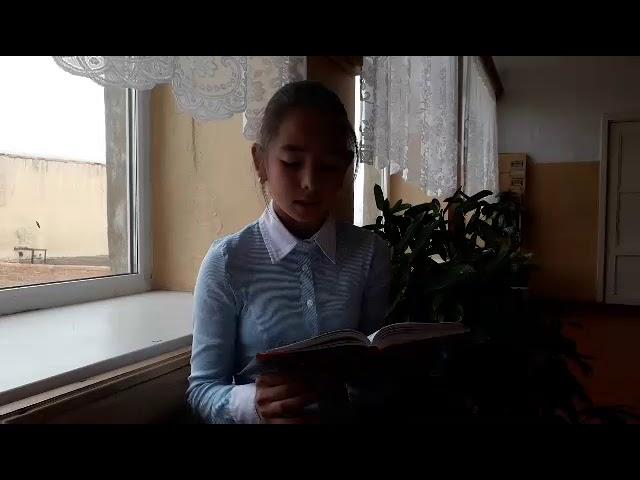 Изображение предпросмотра прочтения – СветланаЛабузова читает произведение «Близнецы» И.С.Тургенева