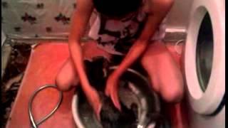 Я купаю кота