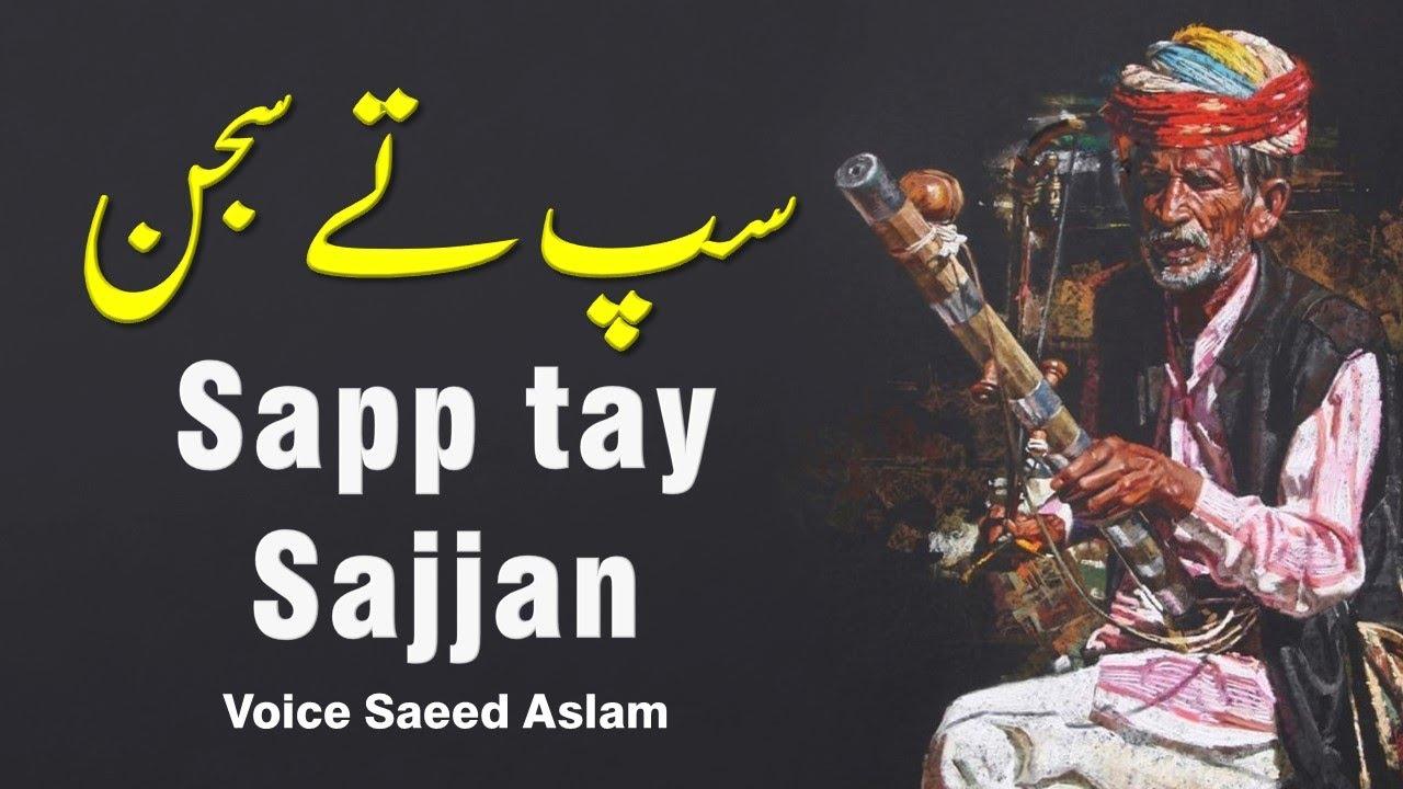 Download Poetry Poetry Sapp tay Sajjan By Saeed Aslam Punjabi Shayari Whatsapp Status | poetry status