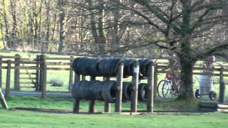 World Mountain Bike Chariot Races 2014