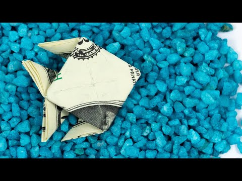 Money Origami Fish 🐟 Easy Money Gift Idea For Travel
