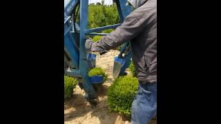 Ball and burlap tree bush digger by caretree machine powered by harlo illinois