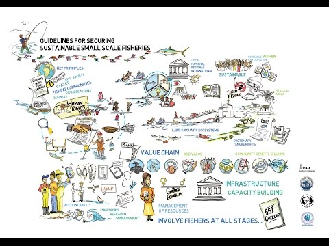 Small Scale Fisheries Guidelines