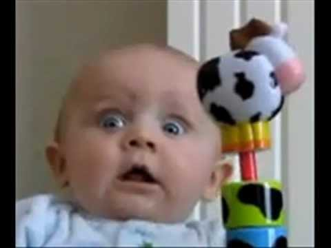 Videos graciosos de bebés.