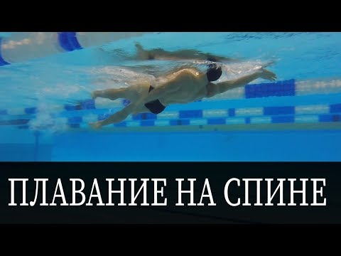 КАК ПЛАВАТЬ НА СПИНЕ? ТЕХНИКА ДЛЯ НАЧИНАЮЩИХ @Swimmate.ru