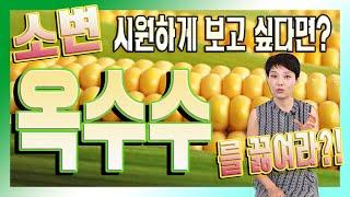 여름철 기운 나게 하는 '옥수수' 수제비 만드는 방법!…