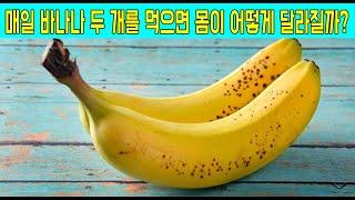 매일 바나나 2개와 이것을 같이 먹으면 뱃살 빼고 변비…