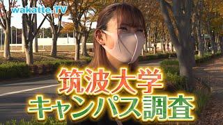 あらゆる面で開かれた大学!筑波大キャンパス調査!!【wakatte.TV】#455