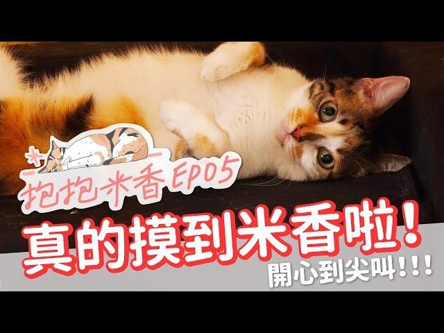 【抱抱米香EP5】做夢也想不到!米香讓我摸了!