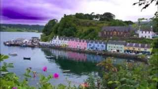 CelLooProject - Portree