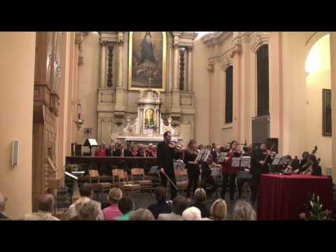 Vivaldi | Concerto en si mineur pour 4 violons et orchestre | les Solistes de l'orchestre