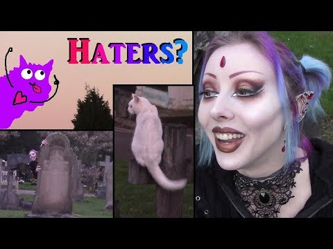 Responding To Haters The Happy Way, Ft. Graveyard Cats!