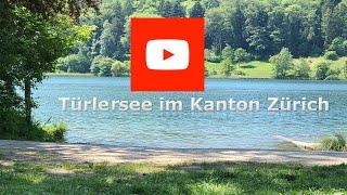 Türlersee im Kanton Zürich schöne Natur Camping Schwimmen Rundweg zum Spazieren