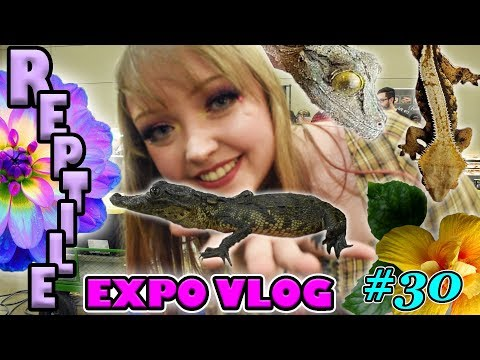 30th REPTILE EXPO Vlog! - HERPS Conroe