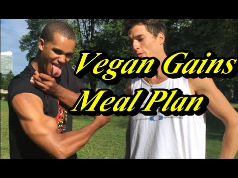 What Vegan Gains Eats In A Day Protein/Calories